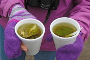Two white styrofoam cups of coca tea for alleviation of altitude sickness in the highlands of Ecuador