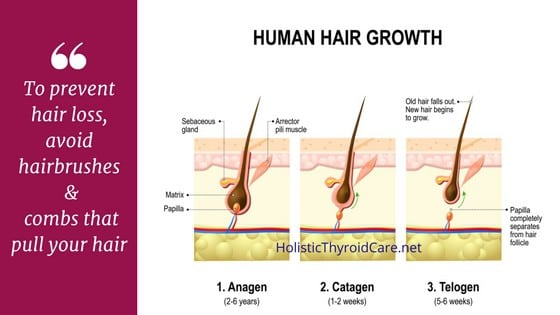 Hair loss and follicle growth illustration
